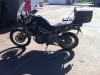 Clean Triumph Tiger