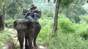 Elephant Camo, Chiang Mai